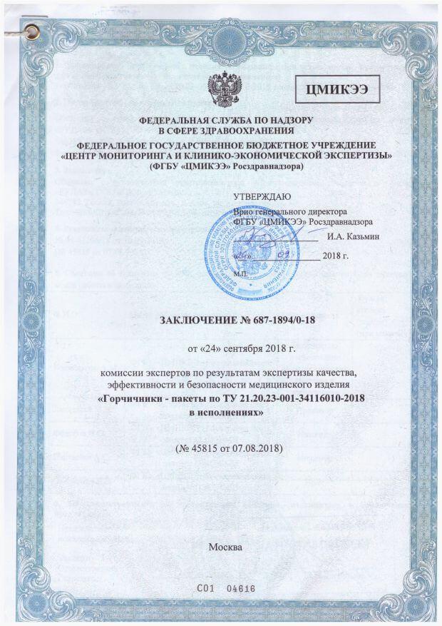 Заключение экспертов о продукции РУДАЗ